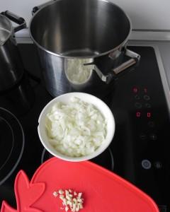 Ponemos un poco de aceite en una olla y pochamos la cebolla y el ajo