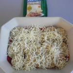 Otra de queso parmesano rallado
