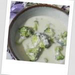 Sopa cremosa de brócoli y queso